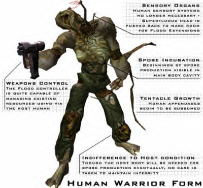 400px-Warrior_Form_Human2.png