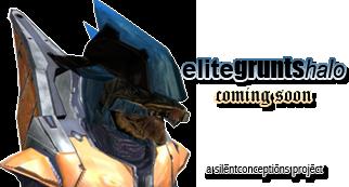 elitegruntshalo.png