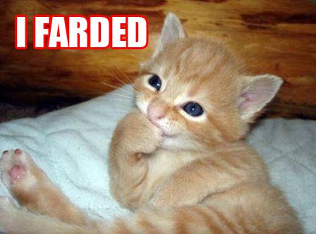 fardedlo8.jpg