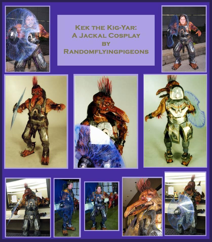 halo_3_jackal_cosplay_by_randomflyingpigeons_d2ptc8o-pre.jpg
