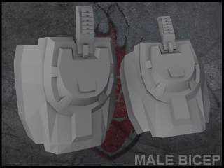 halo_reach_male_bicep_by_forgedreclaimer-d3aro1j_zpsr173abwh.png
