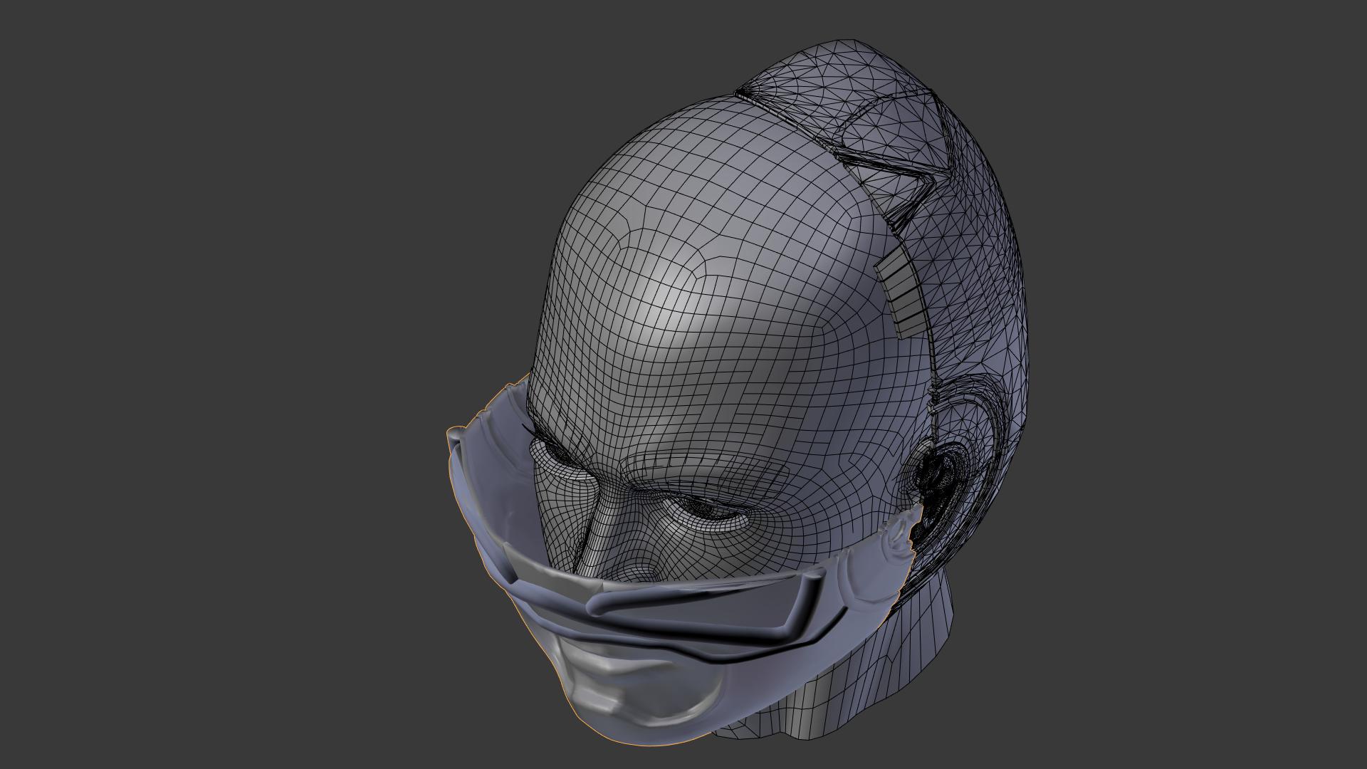 Helmet Example.png