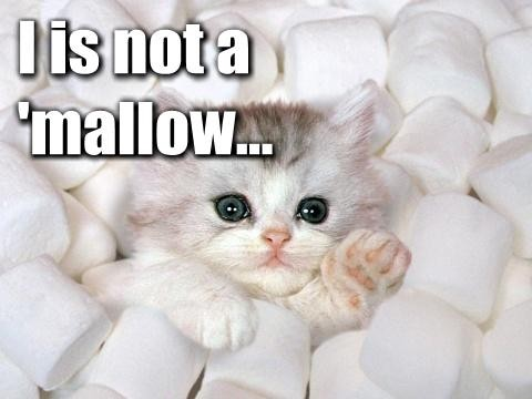 i-is-not-a-mallow.jpg