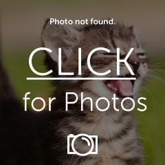 Photo127.jpg