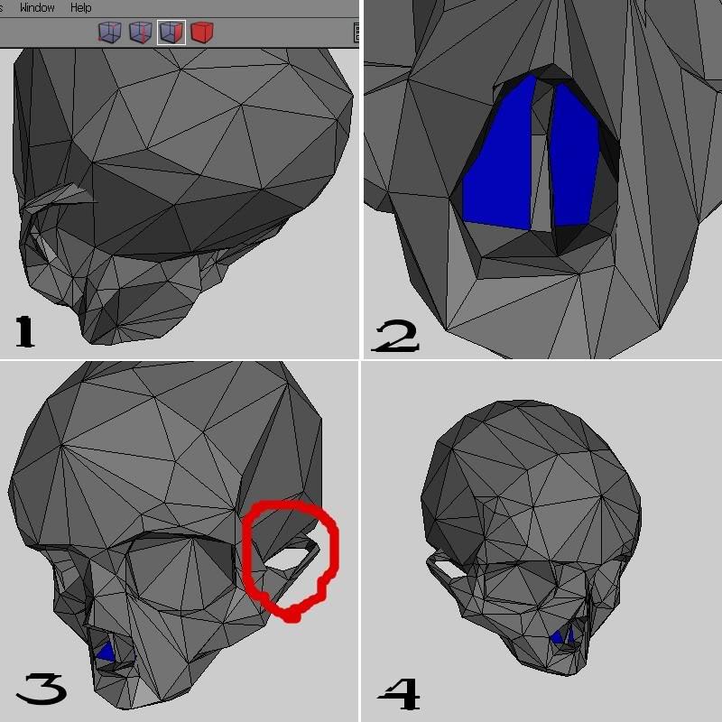 skull_progress.jpg